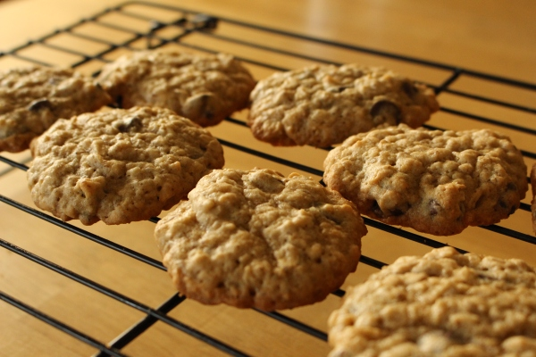 Freezable Lactation Cookies